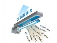 Clean Air & Tune-Up Bundle Special!